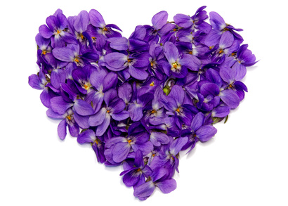 sweet-violet-heart