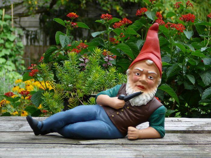 800px-German_garden_gnome