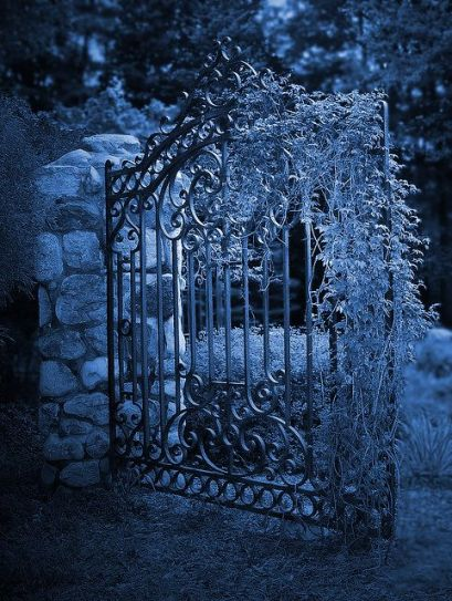 moonlit garden gate